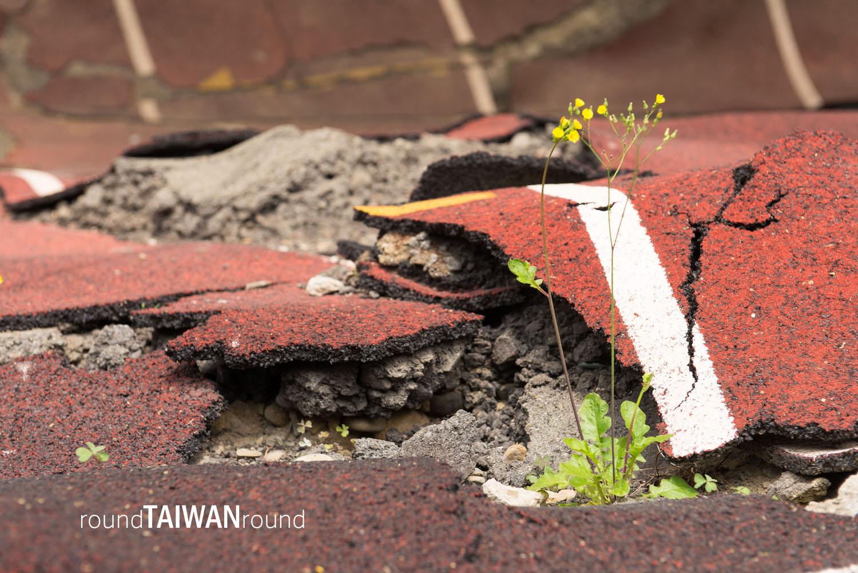 921 Earthquake Museum of Taiwan (921地震教育園區)-014