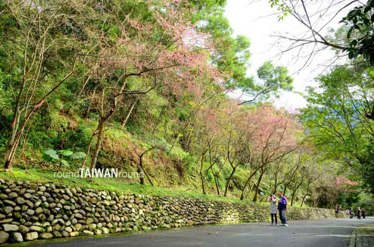 Rehshan Botanick Garden (仁山植物園)-006.JPG