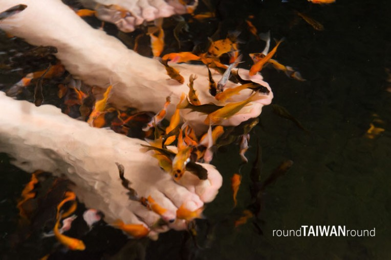 Tangweigou Park (湯圍溝公園)-011.jpg