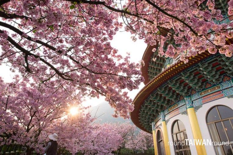 Wuji Tianyuan Temple (無極天元宮)-017.jpg